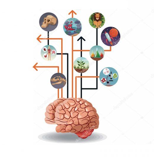 Cérebro conectado com o todo. Inovação